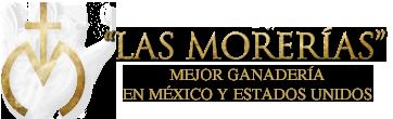 Las Morerías - Mejor Ganadería En México