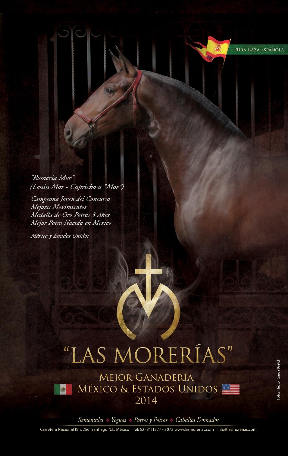 Las Morerías